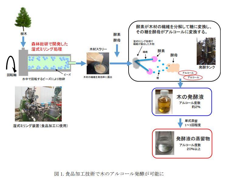 木のお酒研究内容