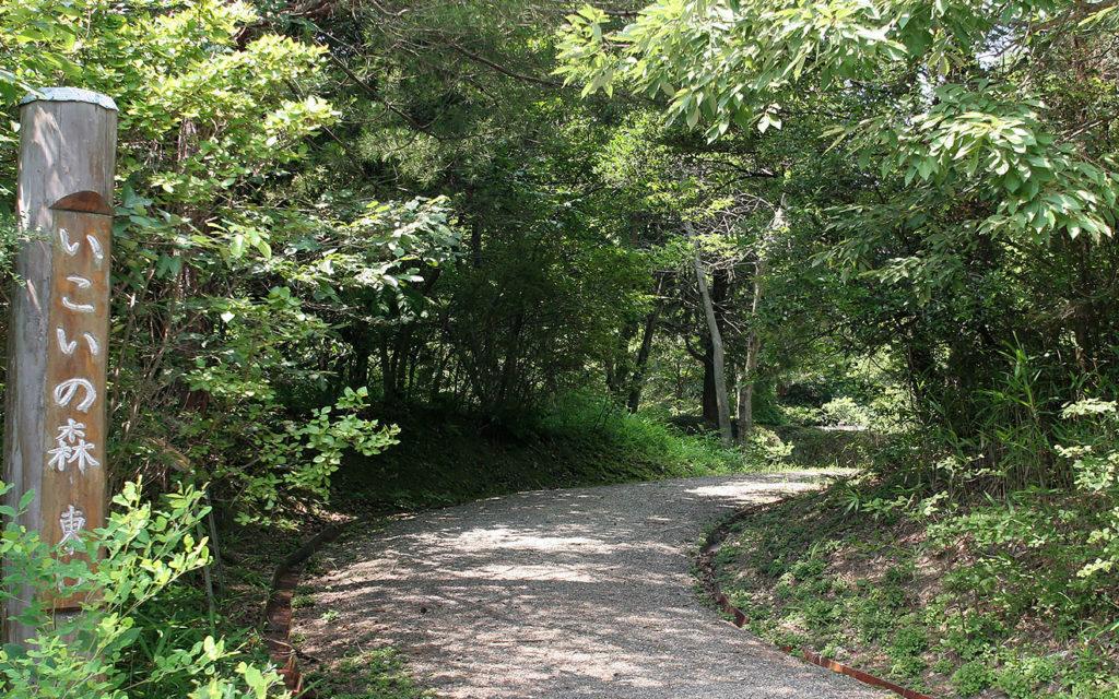 植物園内にあるいこいの森