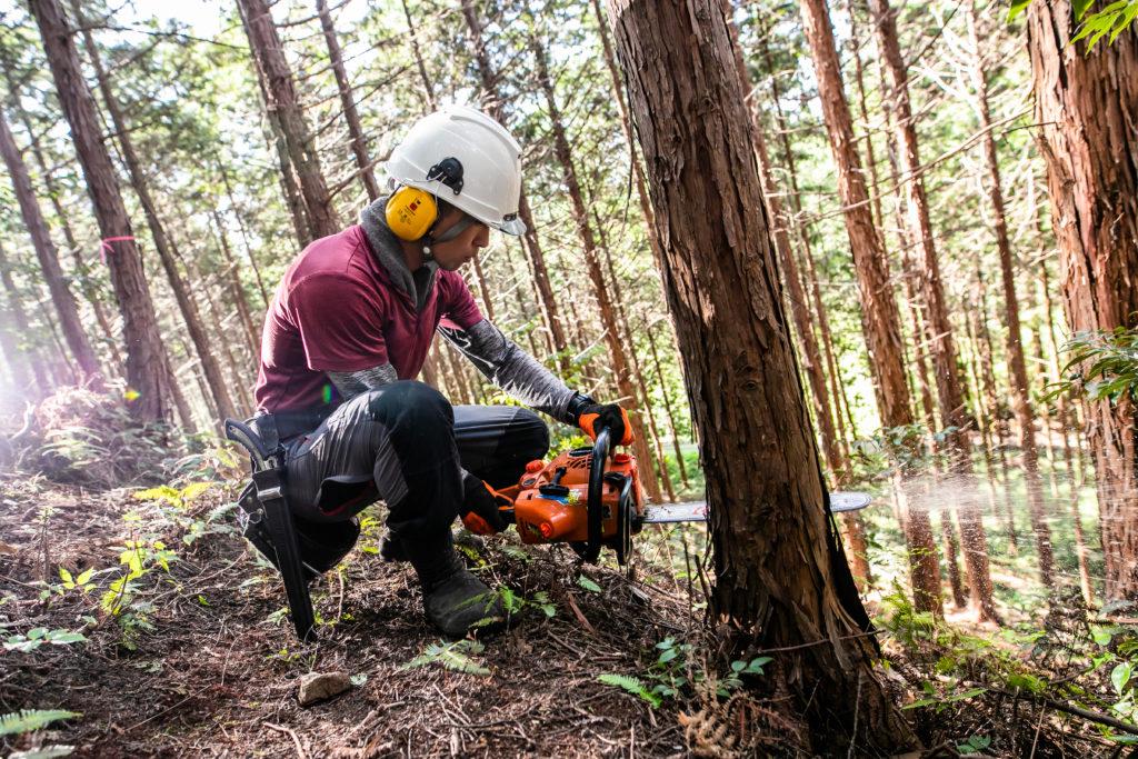 防災,林業,森林の仕事ガイダンス
