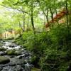 蔵王国定公園内13万平米の森に佇む、大人の森林温泉リゾート。あなただけの自由な一日をオールインクルーシブのステイスタイルで。