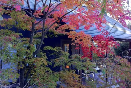 自然に囲まれたカフェ特集  ~御影茶屋(長野県)~