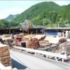 47都道府県の柱プロジェクト~大分県~