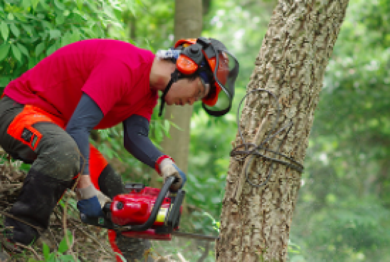 【新卒フェア出展企業ご紹介】森林文化アカデミー様