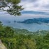 木の国 尾鷲林業の歴史