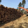 """""""つなぐ""""ことでより良い木質バイオマス事業を生む【森のエネルギー研究所 九州営業所】"""
