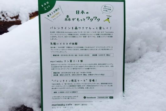森ワクフリーペーパー2月号発行!