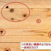 木材の節(ふし)って何?