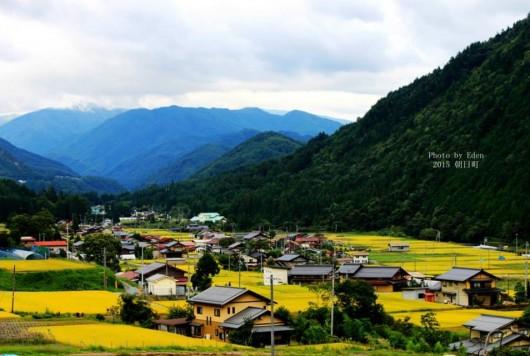 【求人】「森×宿泊×旅行」新しい取り組みを一緒に進める有資格者募集!!