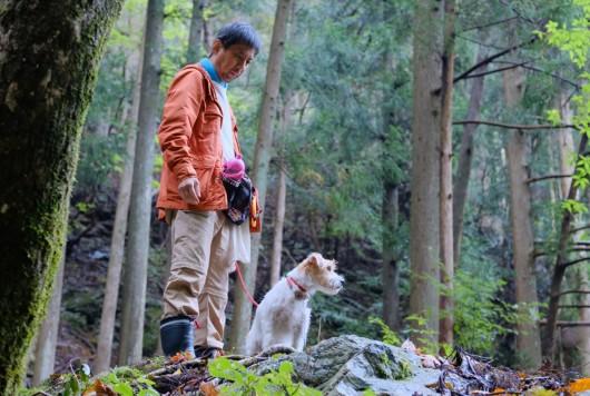 """""""犬が楽しい""""はきっと、人も森も楽しい"""
