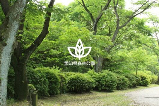 全国植樹祭の開催地としても注目を集めた 豊かな自然広がる憩いのスポット「愛知県森林公園」。