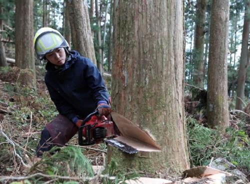 ぎふではじめる林業&農業。まずはここで情報収集を!