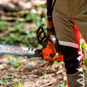 林業現場を体感するツアー!岐阜県森林公社主催! 現場担当者のリアルに迫る!