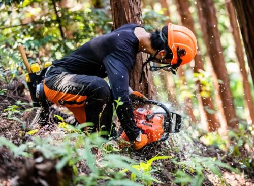 森ではたらく、森で暮らす。 岐阜県・愛知県内の企業が一堂に集結!森林の仕事ガイダンス開催!