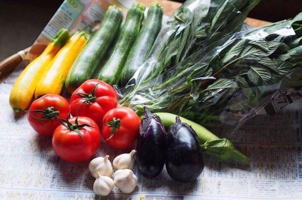 野菜 スピリット みな土