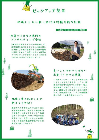 木質バイオマスエネルギー,森のエネルギー研究所,記事